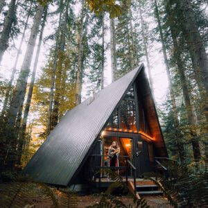 A-Frame with metal roof in woods