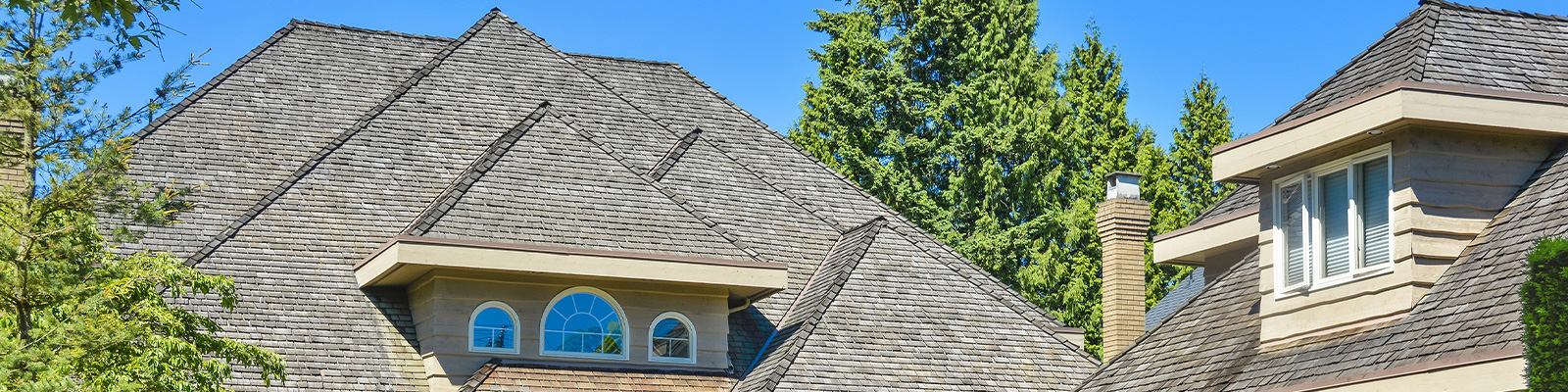 Best Roofing Buying Guide 2021