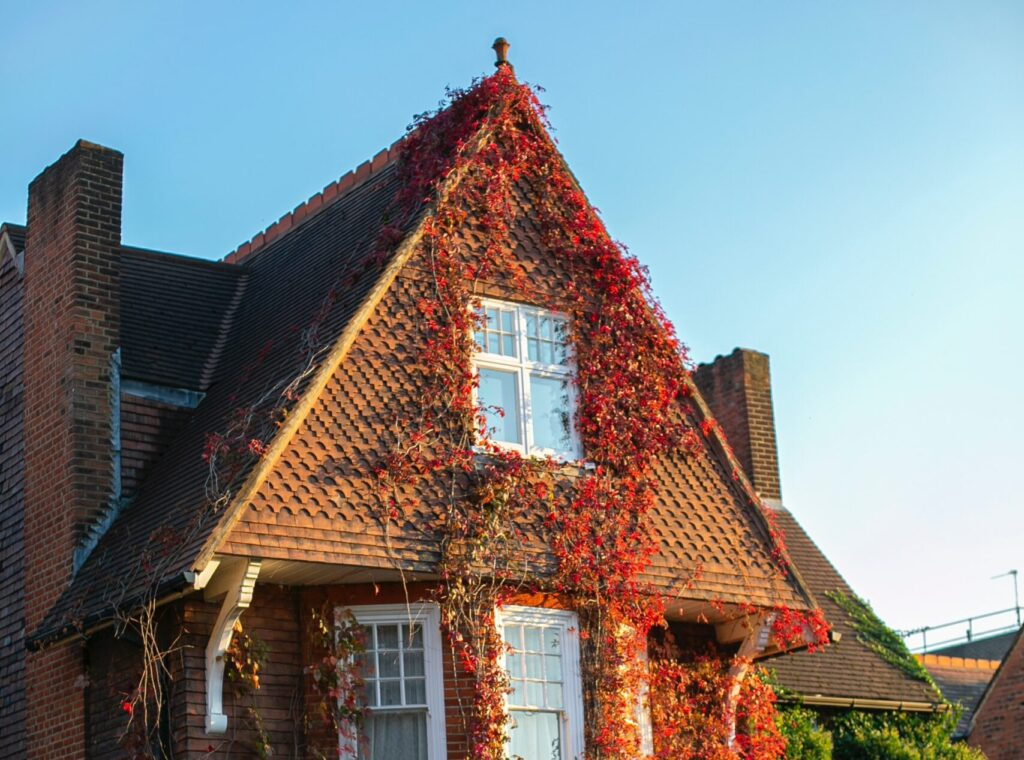Top Fall Roof Maintenance Tips You Need To Do Now